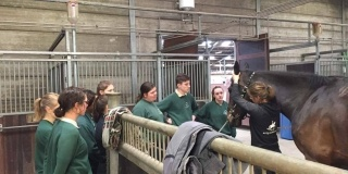 Workshop in ruiterschool Torhout was een succes